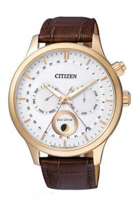 CITIZEN AP1052-00A