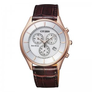 Citizen AT2362-02A