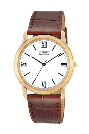 Citizen AR0012-15A